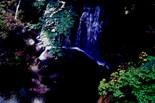 Waterfallcards