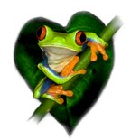 I Heart Frogs