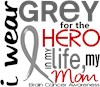Brain Cancer Gray Ribbon