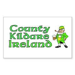 County Kildare, Ireland Rectangle Sticker (Rectangle 50 pk)