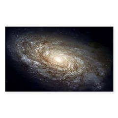 NGC 4414 Spiral Galaxy Oval Sticker (Rectangle 50 pk)