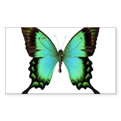 Green Butterfly Rectangle Sticker (Rectangle 50 pk)