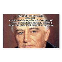 American President FDR Rectangle Sticker (Rectangle 50 pk)