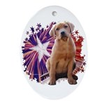 Lab Star Oval Ornament