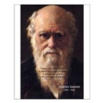 Charles Darwin: Evolution Small Poster