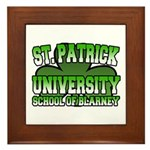 St. Patrick University School of Blarney Framed Ti