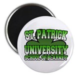 St. Patrick University School of Blarney Magnet