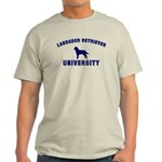 Lab University Light T-Shirt