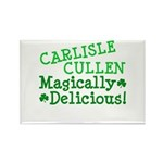 Carlisle Magically Delicious Rectangle Magnet (10