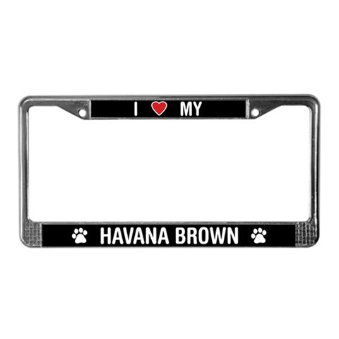 dj havana brown. spears as dj havana brown