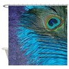 Purple and Teal Peacock Shower Curtain