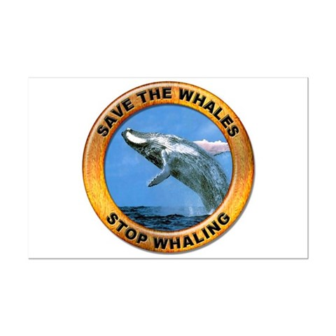 save whale. Save Whales Stop Whaling