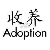 Chinese Character Adoption Decal